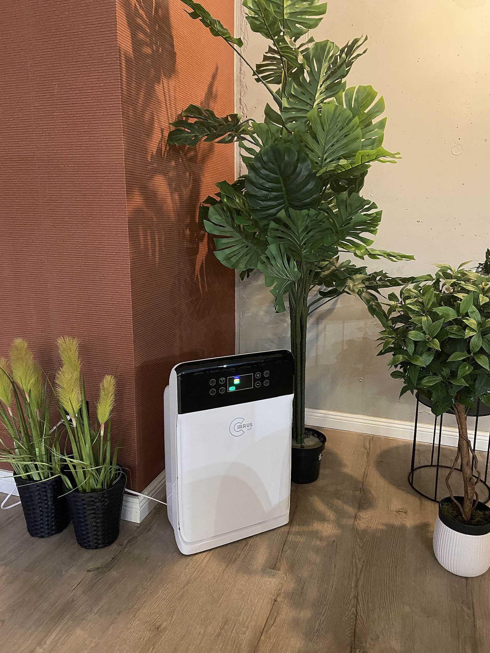 oczyszczacz powietrza welmax opinie